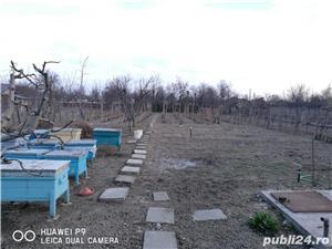 Vand/schimb/negociez casa de locuit ecologica in Com.(sat) Vulturu, Vrancea - imagine 10