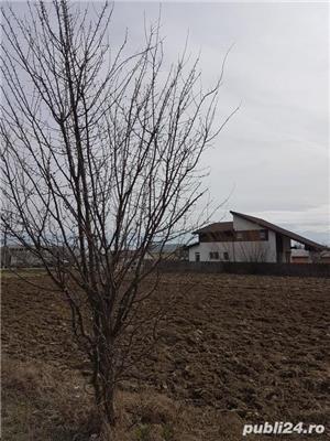 Oferta vanzare teren intravilan Localitatea GRUIU - imagine 5