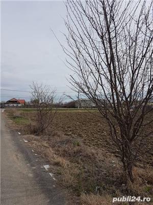 Oferta vanzare teren intravilan Localitatea GRUIU - imagine 4