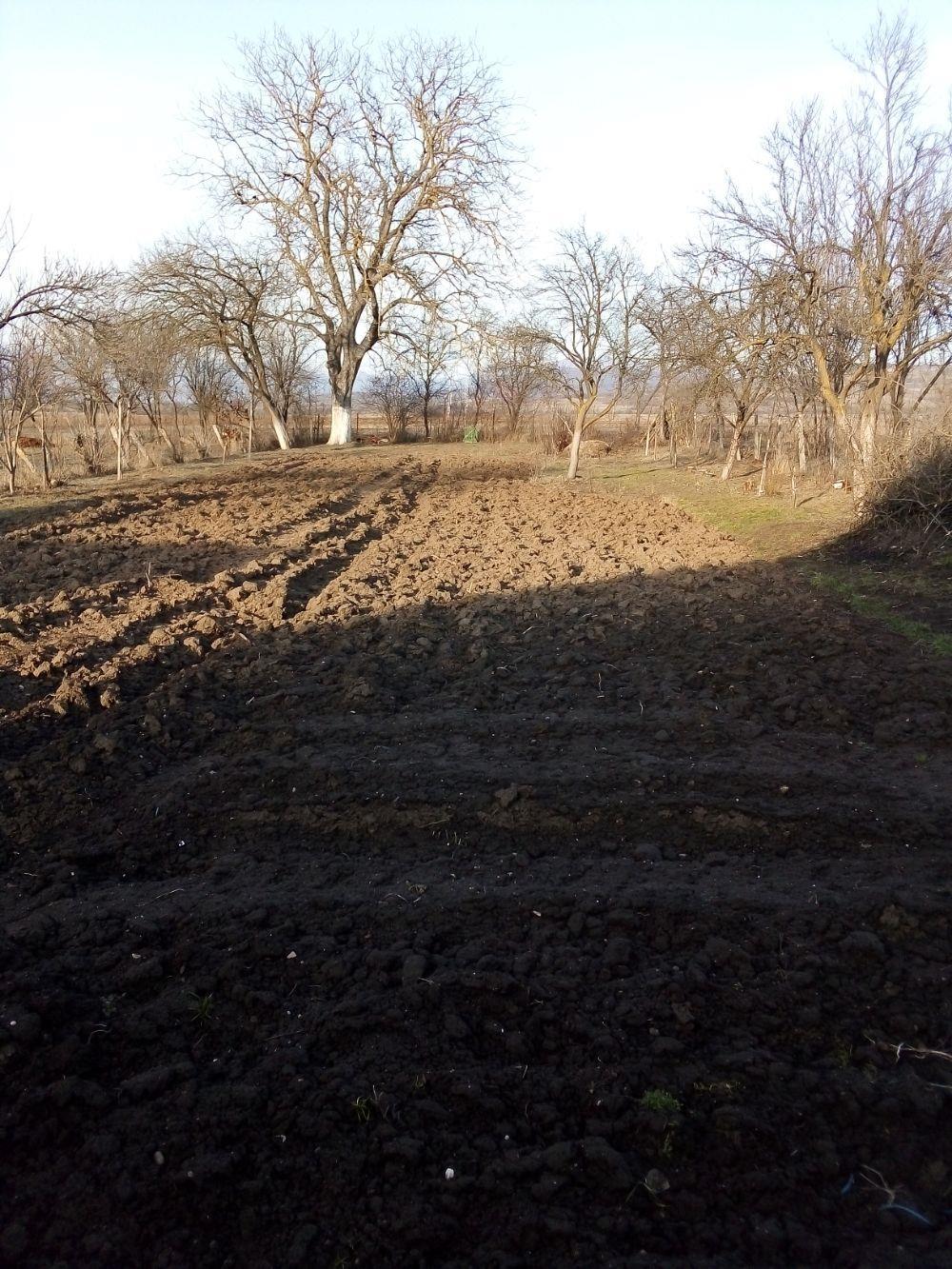 OFER spre Vinzare Casa Frumoasa într-o zona forte Bună la 12 km de DEVA Ocupabila Imediat acte regul - imagine 6
