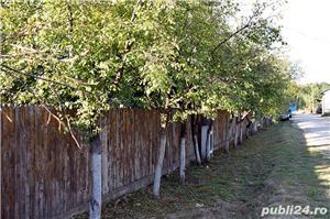GOSPODĂRIE: 2 case + anexă cu fundație și 2 grădini - imagine 4
