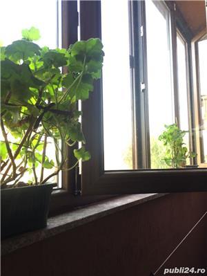 Apartament 2 camere, zona Damaroaia, 2011 - imagine 6