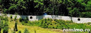 Domeniu de vanzare cu 40 HA la 50 km de Cluj - imagine 8
