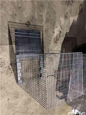 Capcana vulpiță,pisici ,șobolani,dihori,vidre NOU - imagine 6