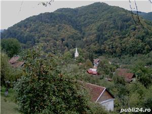 Casa de vacanta la munte - imagine 6