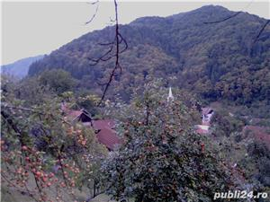 Casa de vacanta la munte - imagine 7