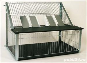 Sputnice pentru porumbei  - imagine 2
