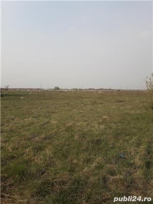 Mosnita-Drumul Boilor,teren 8 ha, cu PUZ, pret 17 euro/mp - imagine 4