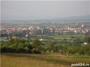 Vând gradină cu pomi fructiferi Caransebeș zona Teiuș - imagine 4
