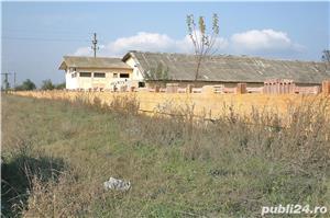 STOENESTI - Olt, vanzare ferma cu teren 18 Ha. comasat (imprejmuita cu gard), plus multe facilitati - imagine 3