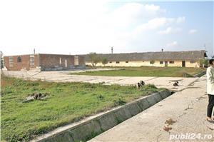 STOENESTI - Olt, vanzare ferma cu teren 18 Ha. comasat (imprejmuita cu gard), plus multe facilitati - imagine 5