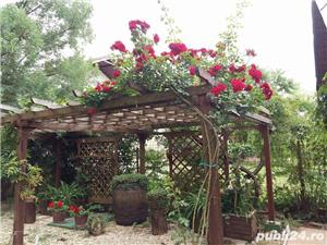 Vila superba langa padure in Corbeanca curte 3200mp - imagine 10