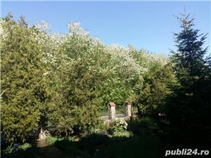 Vila superba langa padure in Corbeanca curte 3200mp - imagine 12