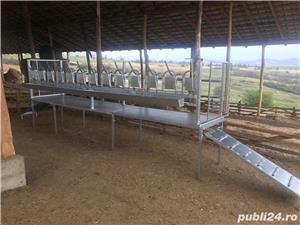 Standuri de capre si oii pentru sala de muls - imagine 1