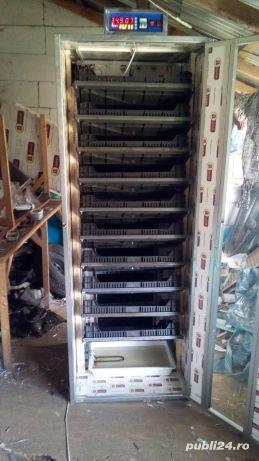 Incubator 30 oua struț automat - imagine 3