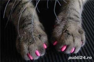 Protectie din silicon gheare pisica - imagine 2