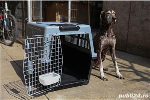 Cușcă transport câini - imagine 1