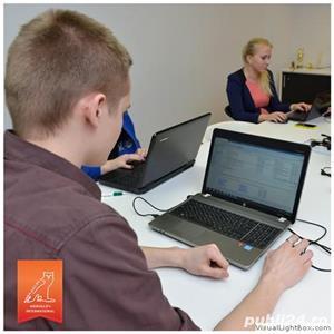 Traducatori in regim de colaborare - imagine 2