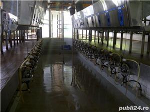 Vand sală muls BOUMATIC PARALEL, 24 posturi, fabricatie USA. - imagine 2