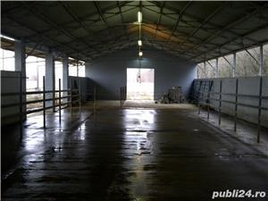 Vand sală muls BOUMATIC PARALEL, 24 posturi, fabricatie USA. - imagine 8