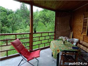 casa de vacanta in Provita de Jos ,sat Draganeasa - imagine 11
