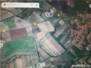 Vând 5 Ha teren agricol situat în Feldioara, jud. Brașov la2 km de DN 13   - imagine 3