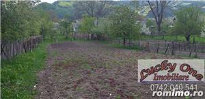 Casa cu teren Viisoara - imagine 5