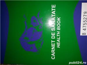 Vând puiuț de ciobănesc caucazian  - imagine 10