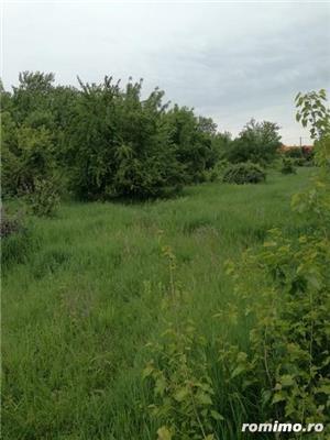 Teren  intravilan, zona Hornbach-Aradului ,  suprafata 7900 mp - imagine 10