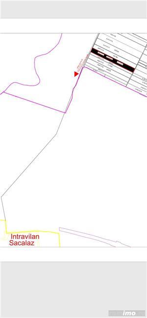 Sacalaz- teren 2ha -400 m distanta de intravilan -35.000 Euro - imagine 7