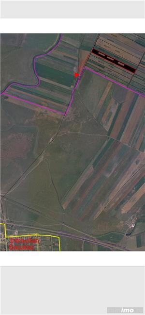 Sacalaz- teren 2ha -400 m distanta de intravilan -35.000 Euro - imagine 9