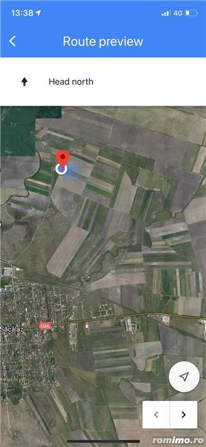 Sacalaz- teren 2ha -400 m distanta de intravilan -35.000 Euro - imagine 10