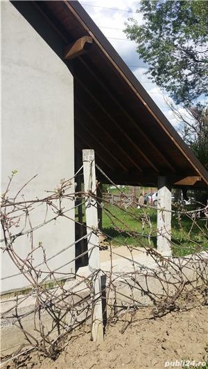 Vand casa la rosu, comuna Merisani, sat Dobrogostea - imagine 58