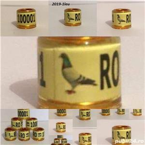 Inele porumbei auriu - imagine 9