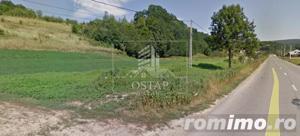 Podiș - lângă pădure - teren intravilan - 2.000 mp - 5,5 Euro/mp - imagine 4
