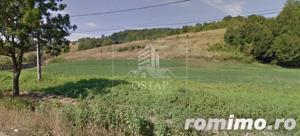 Podiș - lângă pădure - teren intravilan - 2.000 mp - 5,5 Euro/mp - imagine 6