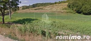 Podiș - lângă pădure - teren intravilan - 2.000 mp - 5,5 Euro/mp - imagine 7