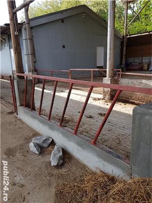 Vand 88 metri gard pentru delimitarea zonei de hrănire a vacilor talie mare, 110 capete.  - imagine 3