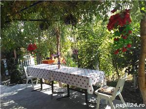 Vand casa la tara in Comuna Perieti-Olt - imagine 14