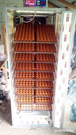 Incubator 1000 oua găină automat - imagine 5