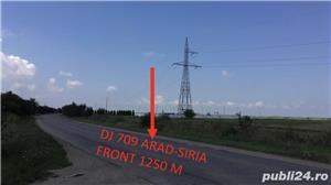 Vand teren intravilan la intrare in Horia jud Arad suprafata 59 Ha  - imagine 2