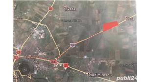 Vand teren intravilan la intrare in Horia jud Arad suprafata 59 Ha  - imagine 4