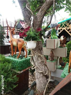 Casa Elena - imagine 6