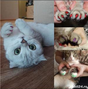 Unghiuțe Căpăcele Unghii Pisici - imagine 5