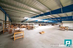 Hală industrială 2.642 mp. în Lipova - imagine 8