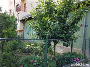 Vând casă cu locație deosebită în Timișoara - imagine 5