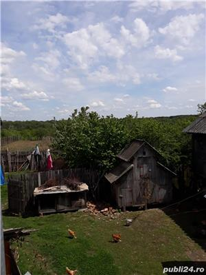 Vand casa si gradina - imagine 7