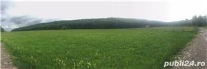 Teren Suceava ,Baia / Bogdănești 5.5 hectare - imagine 1