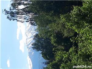 Închiriez cabana pe Valea Avrigului - imagine 10