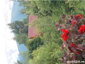 Închiriez cabana pe Valea Avrigului - imagine 16